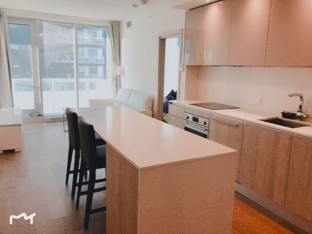 downtown YUL condo 3 1/2 for rent