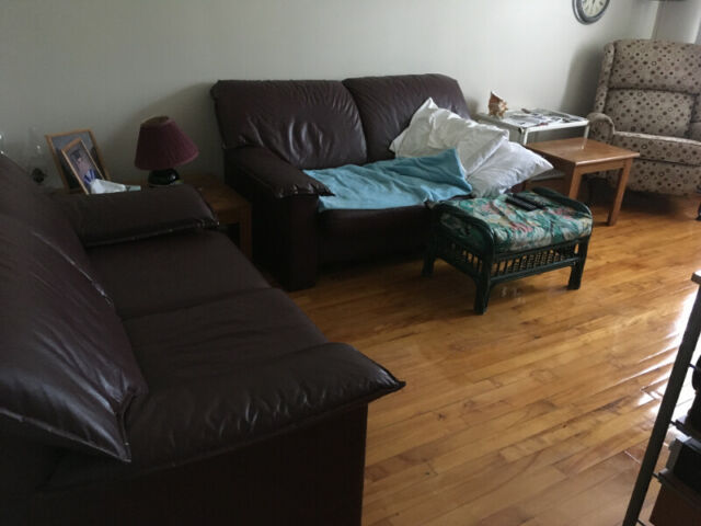 5 1/5 apartment for rent