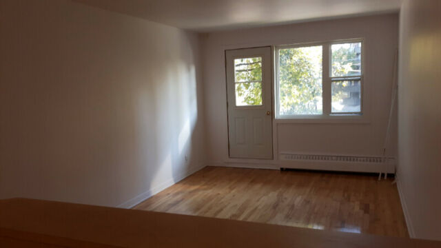 Beautiful, one bedroom apt. in small C-S-L building!
