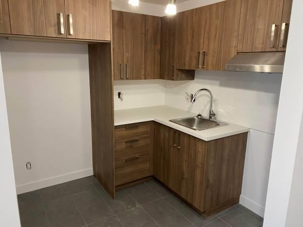 Large 4 1/2's completely renovated for rent in Brossard