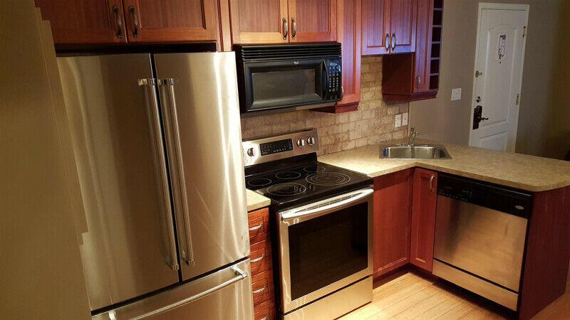 Furnished 1 Bdr. Apt. in St.  Sauveur from February 1