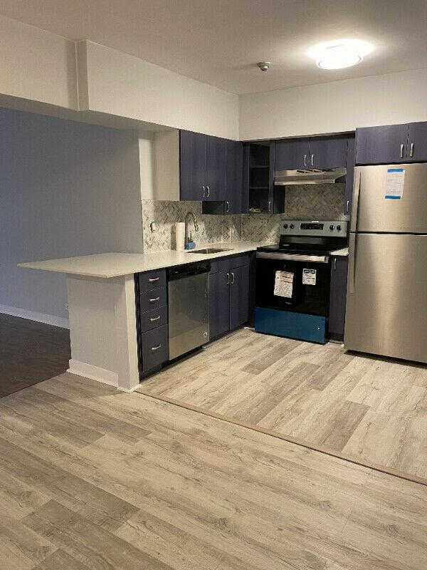 Hampstead Condo Fully Renovated All included W New Appliances+++