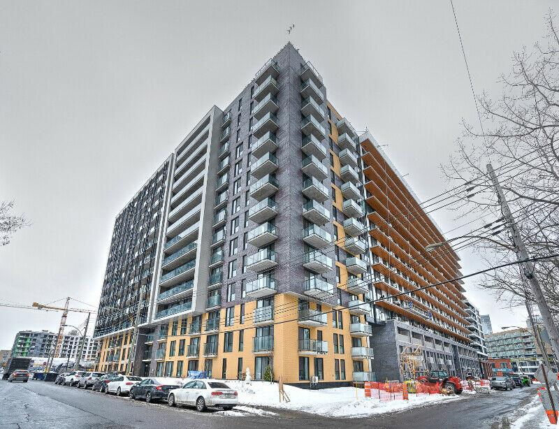 3 1/2 Brand new, bright apartment in Griffintown