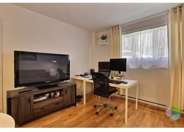 Furnished bright 1 Bedroom Condo Located in the Heart of St Henri