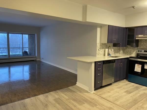 NDG Fully Renovated Condo Incl Heat/AC/Parking/Balcony/New Appliances
