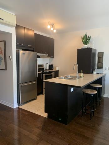 Grand 4 1/2 Dans Pointe St-Charles